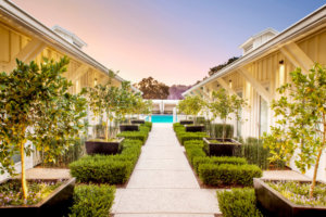 8 U.S. Hotels With CBD Spa Treatments Worth Traveling For